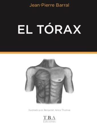El tórax